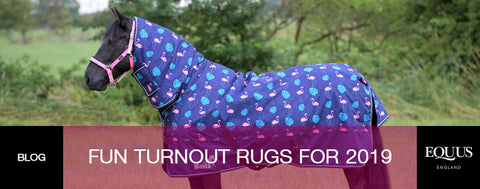 Fun Turnout Rugs for 2019