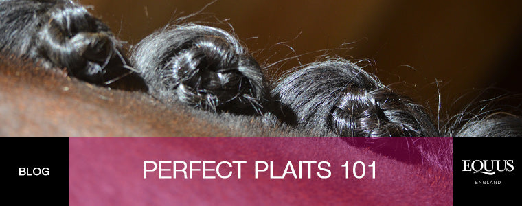 Perfect Plaits 101