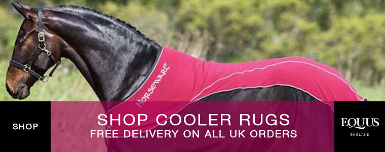 Shop Cooler Rugs