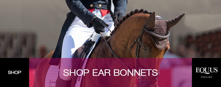 shop ear bonnets for horses