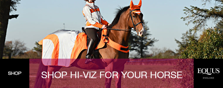shop hi-viz for your horse