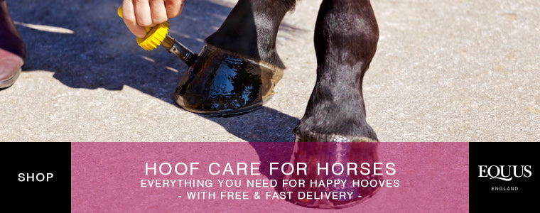Shop horse hoof care products