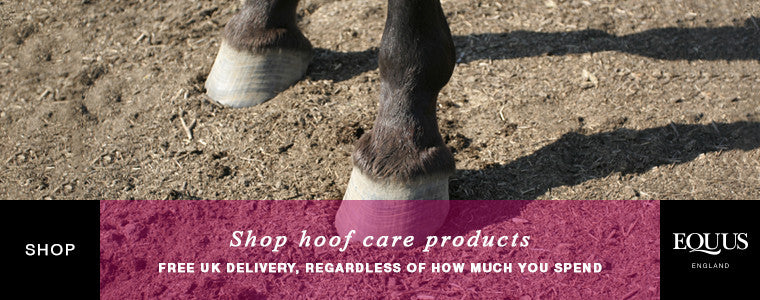 Shop hoof care products online