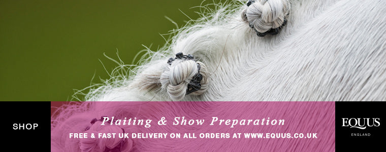Shop horse plaiting and show preparation products