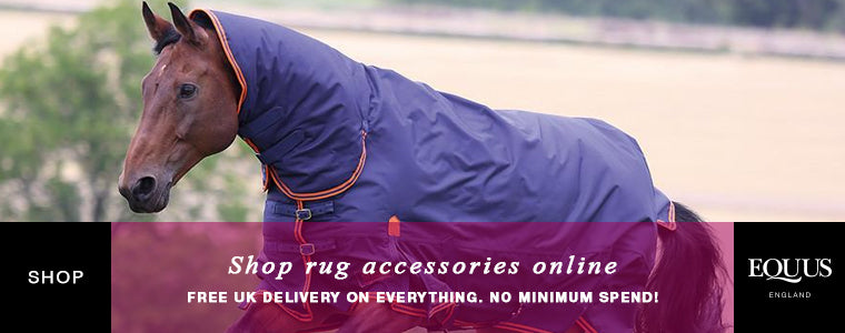 Shop horse rug accessories online