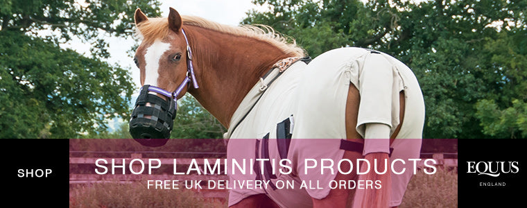 Shop Laminitis Products