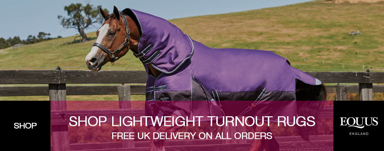 shop lightweight turnout rugs