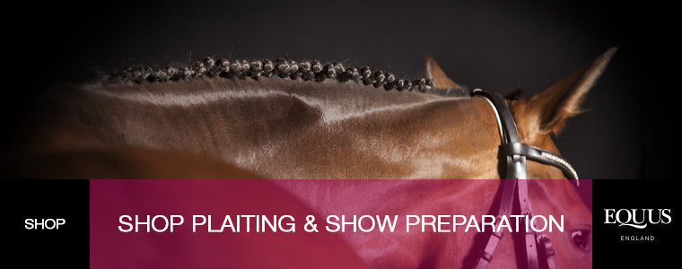 Shop Plaiting & Show Preparation