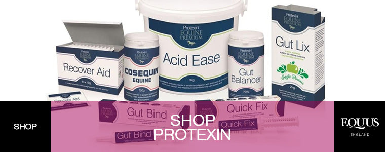 Protexin Equine Premium Horse Supplements