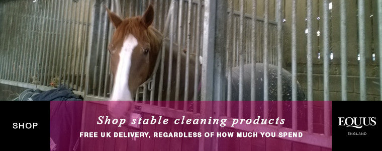 Shop stable cleaning products online