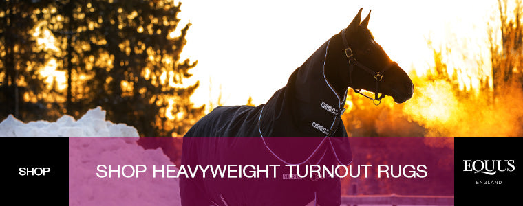 Shop Heavyweight Turnout Rugs