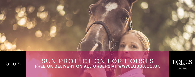 Shop sun protection for horses