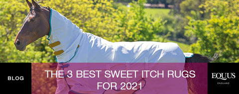 The 3 best Sweet Itch Rugs for 2021