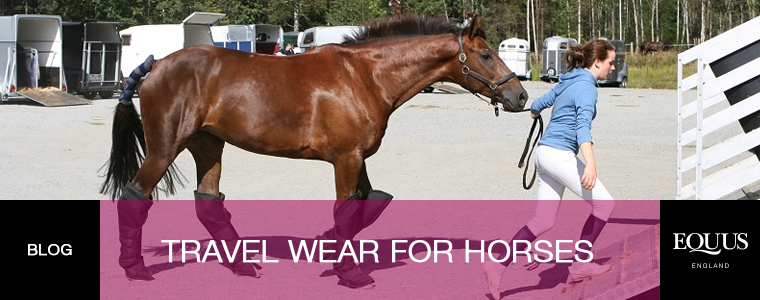 Travel Wear For Horses