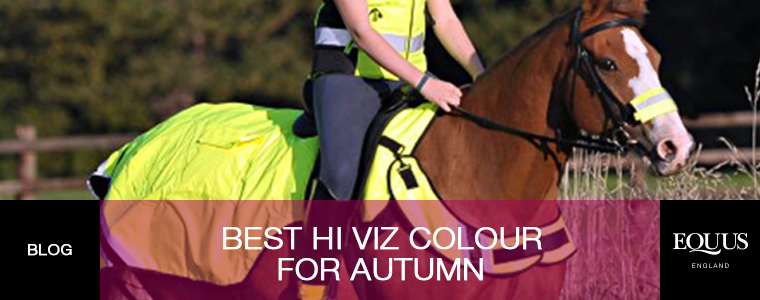 Best Hi Viz Colour for Autumn
