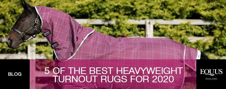5 of the Best Heavyweight Turnout Rugs for Winter 2020
