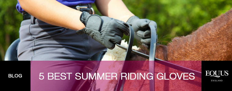 5 Best Summer Riding Gloves
