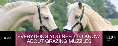 Muzzle up: Everything you need to know about grazing muzzles