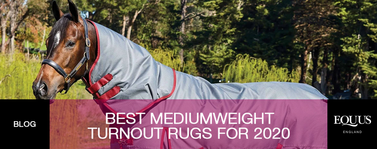 Best Mediumweight Turnout Rugs for 2020
