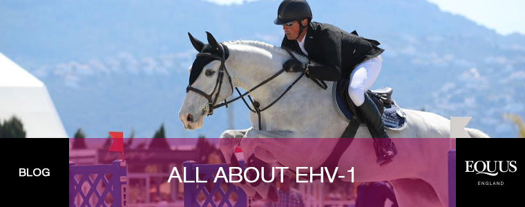 EHV-1