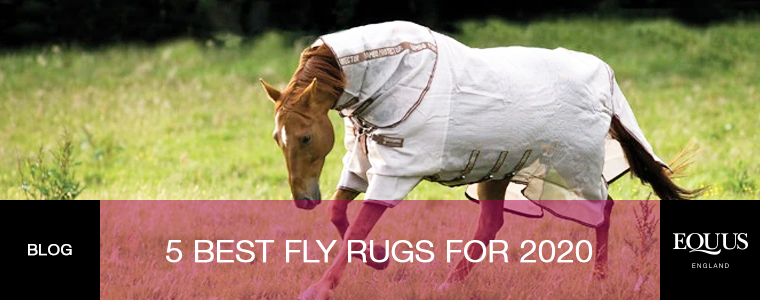 5 of the best fly rugs for 2020