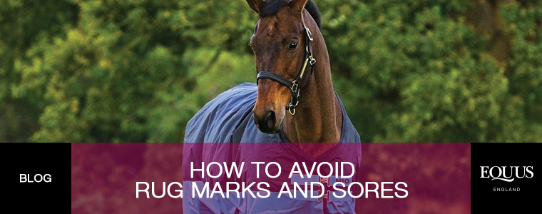 How To Avoid Rug Marks and Sores