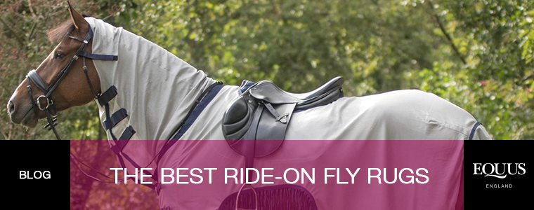 The Best Ride-On Fly Rugs