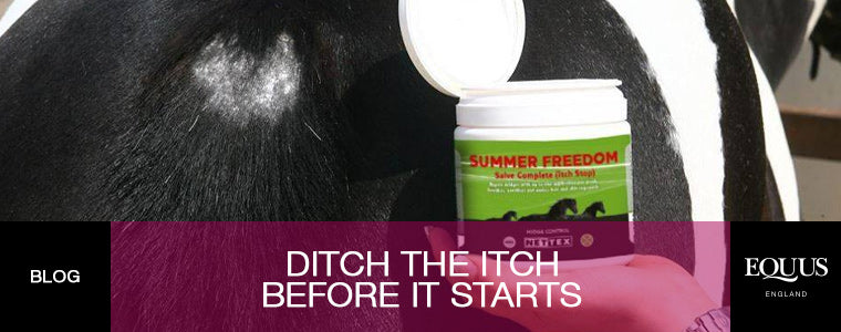Ditch the Itch Before It Starts Blog at EQUUS