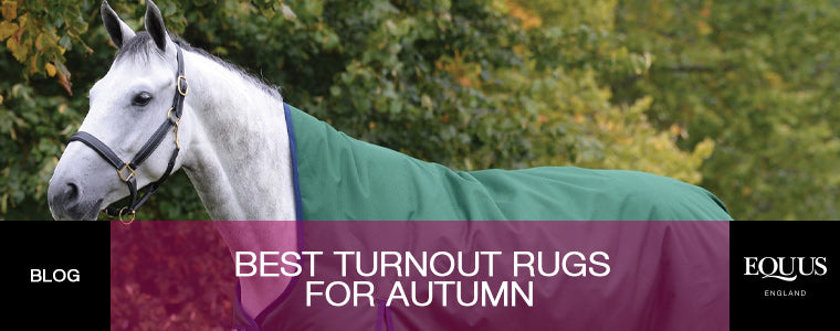 Best Turnout Rugs for Autumn