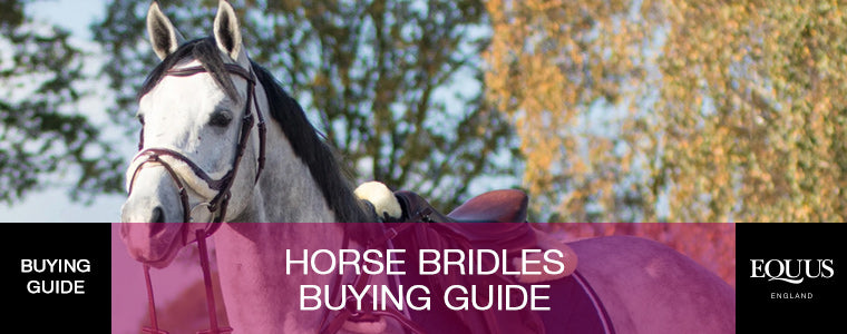 Horse Bridles Buying Guide