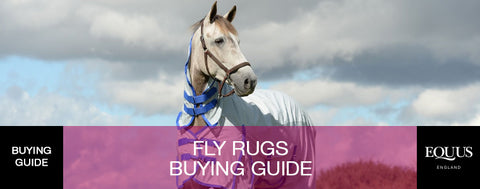 Fly Rugs Buying Guide