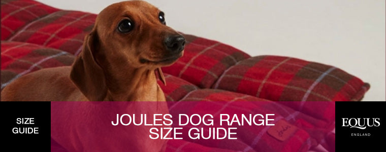 Joules Dog Size Guide