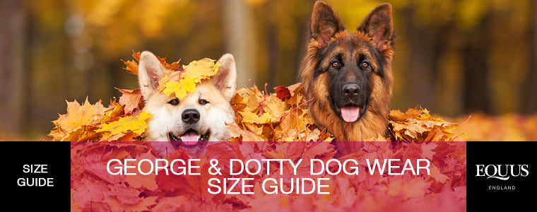 George and Dotty Size Guide