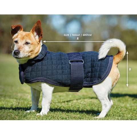 Weatherbeeta ComFiTec Thermocell Dog Coat Size Guide Image