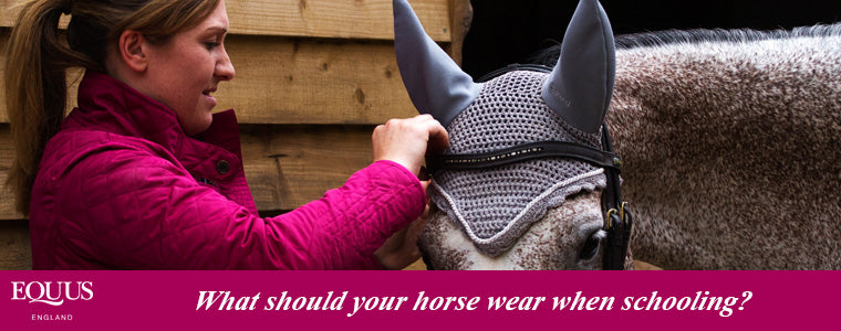 what should your horse wear whilst being schooled?