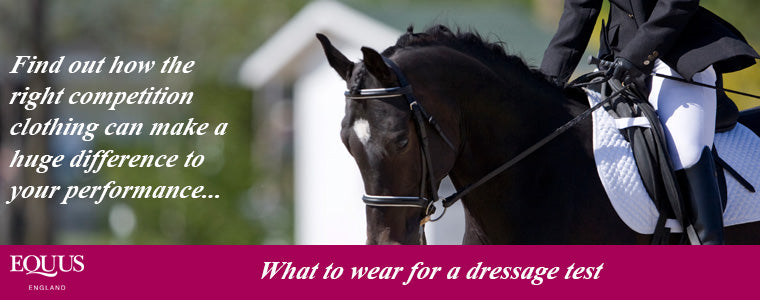 what to wear for a dressage test