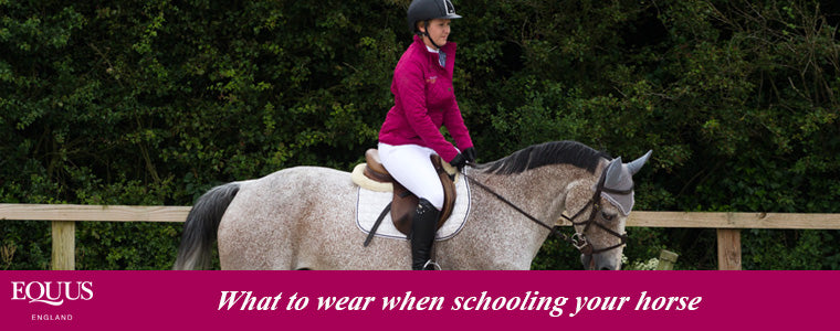 what to wear when schooling your horse