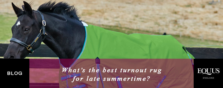 What's the best turnout rug for late summertime?