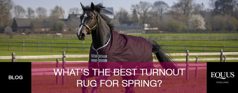 What's the best turnout rug for Spring?