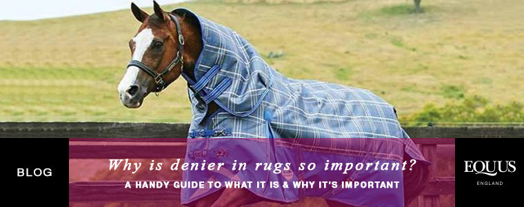 Why is denier in horse rugs so important?