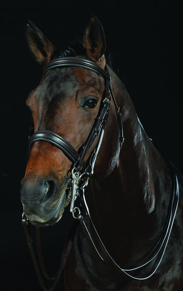 Collegiate Raised Weymouth Bridle Brown 228290