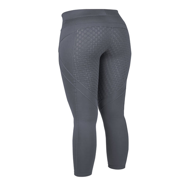 Dublin Performance Thermal Active Tights Grey Rear