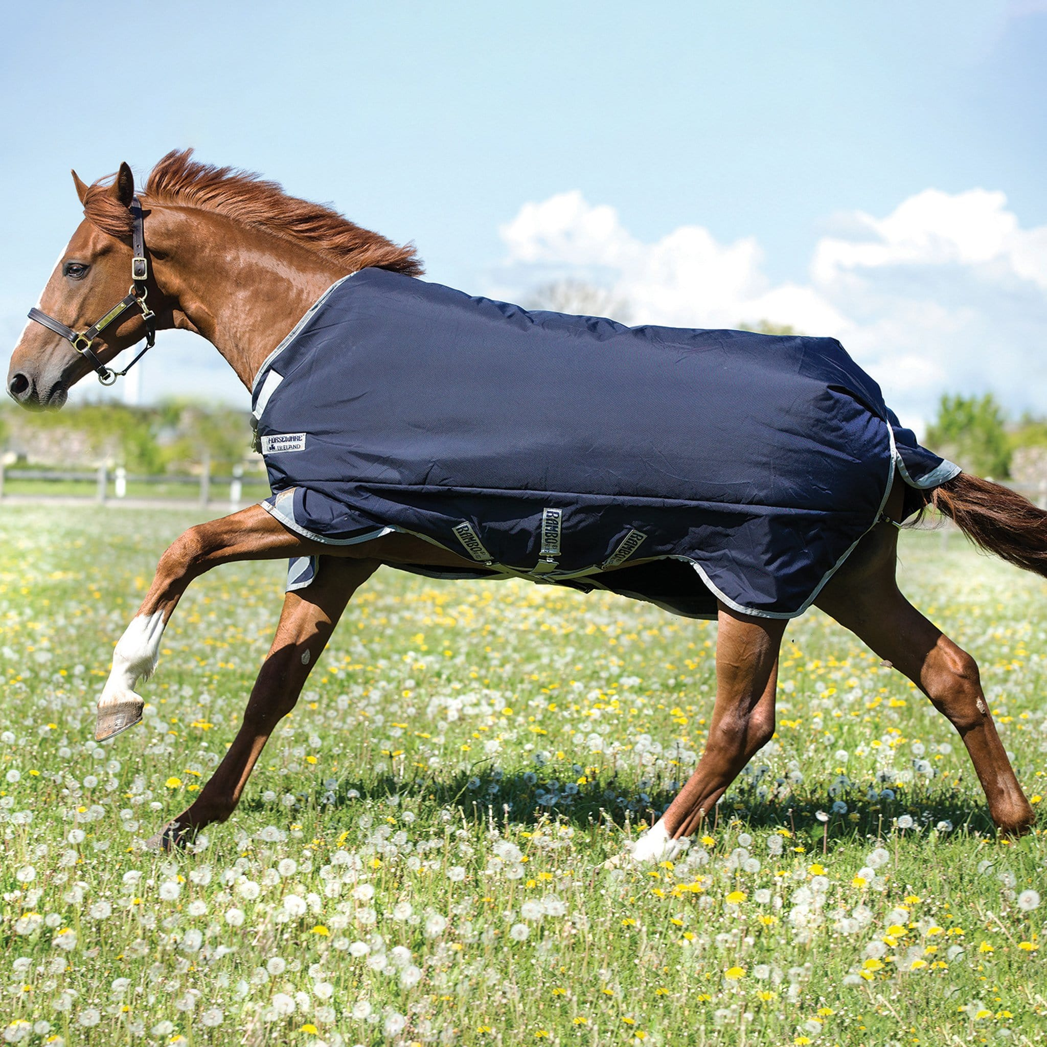 Rambo Original with Leg Arches 200g Mediumweight Standard Neck Turnout Rug AAAA97.