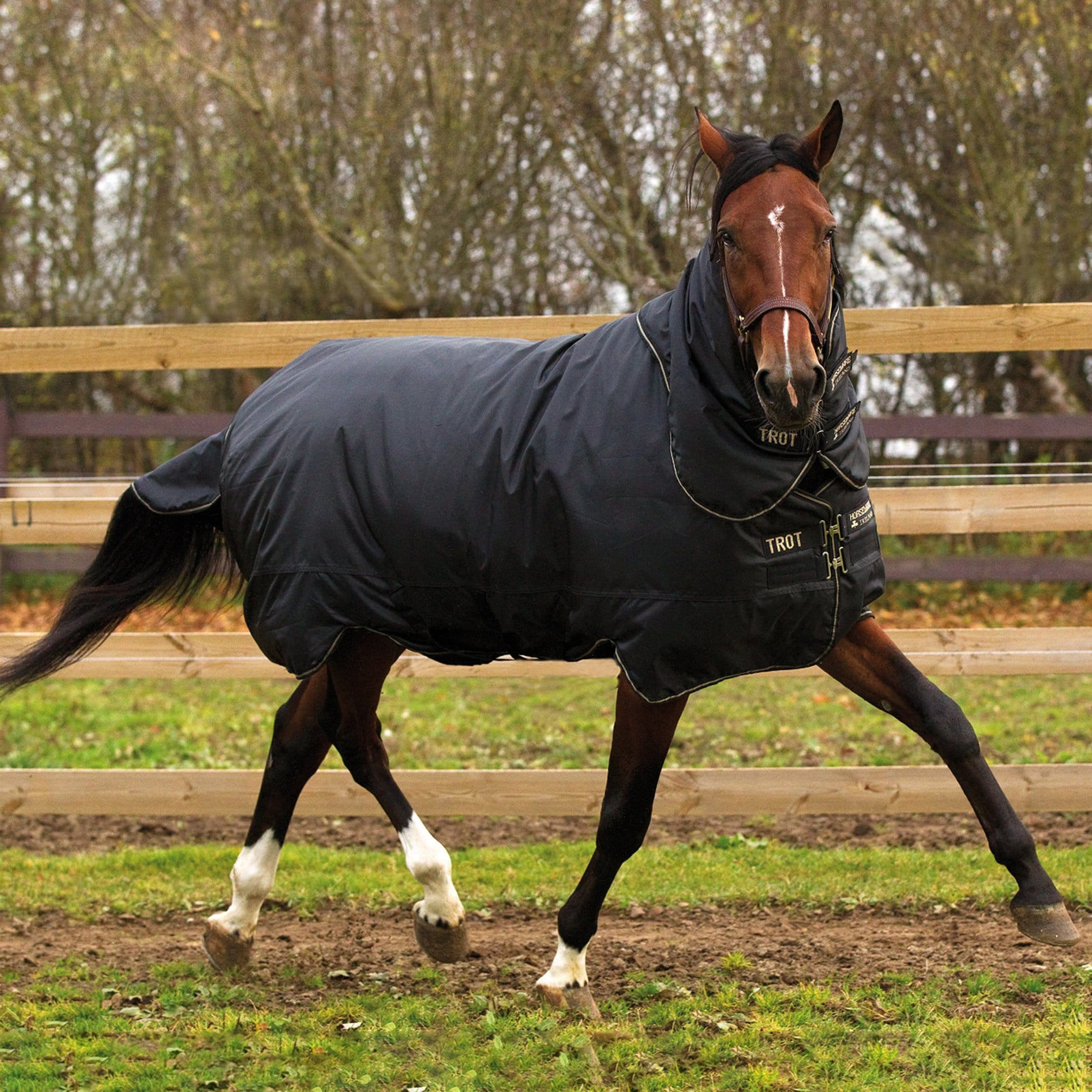 Horseware Trot Plus Heavyweight 350g Detachable Neck Turnout Rug AAHT13.