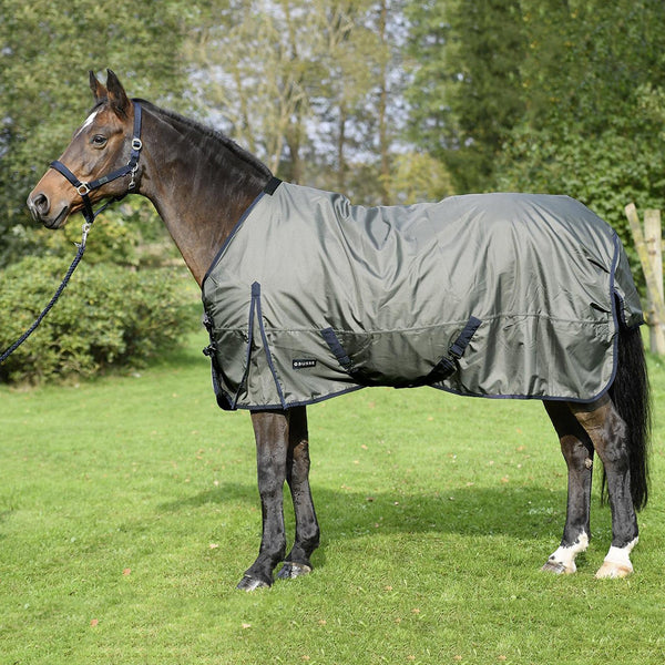 Busse Astana Light 100 Thermo Turnout Rug Olive 603099