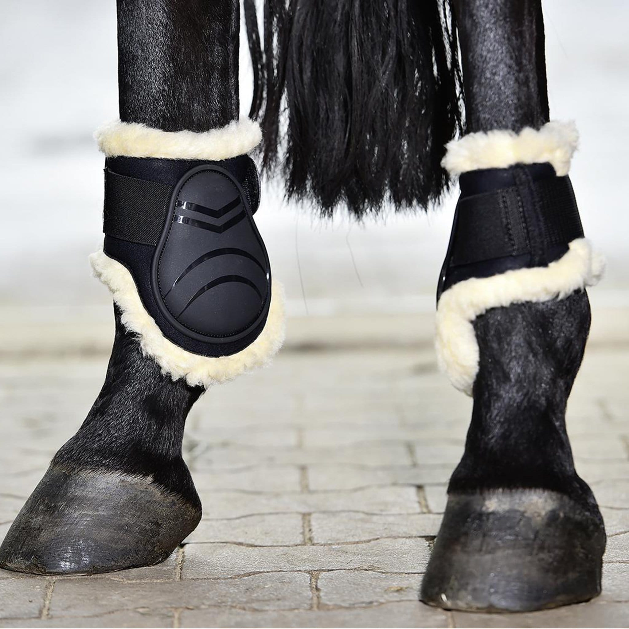Busse Bounce Fetlock Boots On Horse 605551