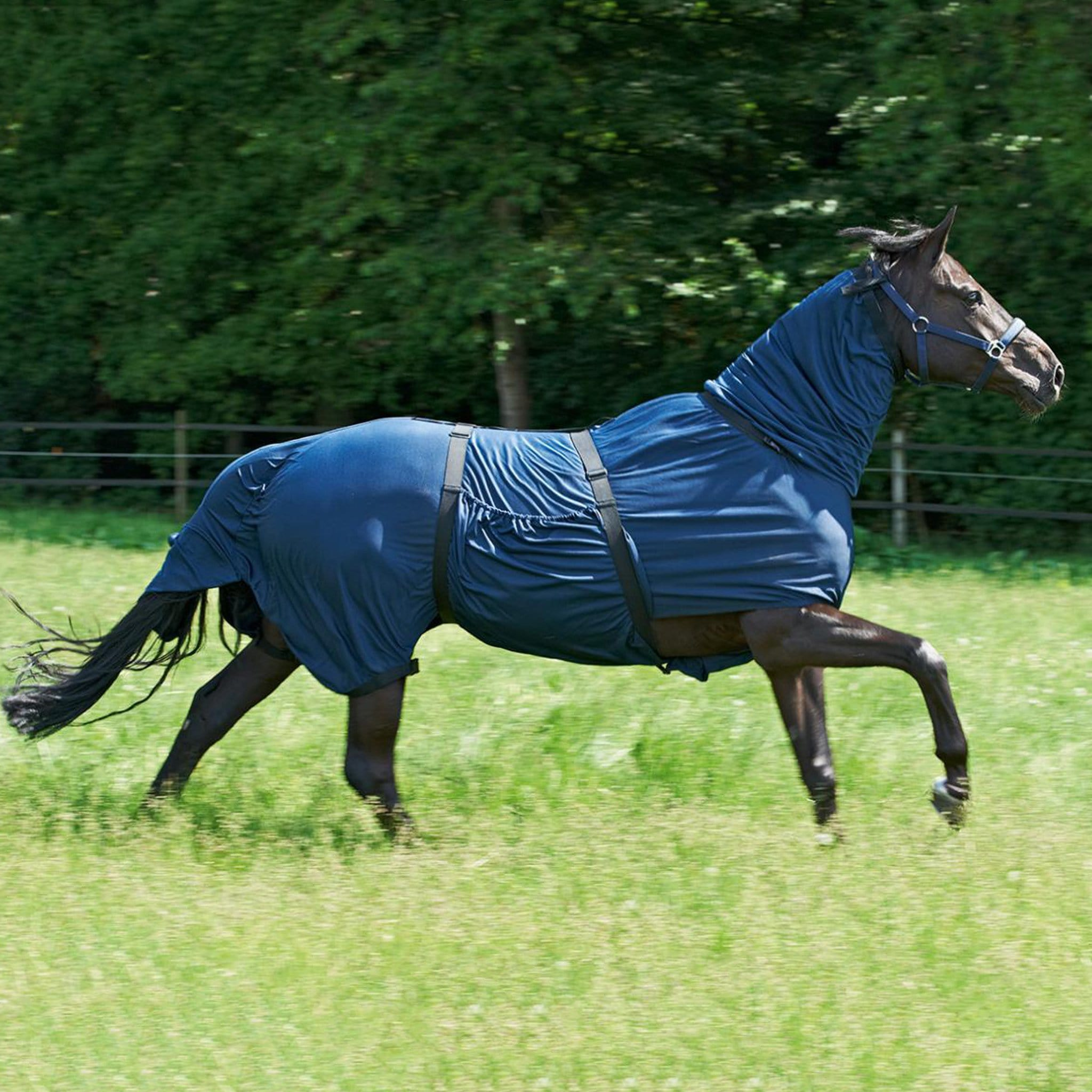 Busse Extensive Eczema Combo Fly Rug 603016