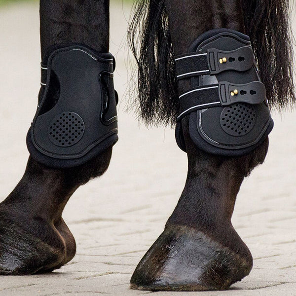 Busse Jump-Pro Fetlock Boots Lifestyle 605557