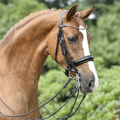 Busse Mailand Double Bridle 120905