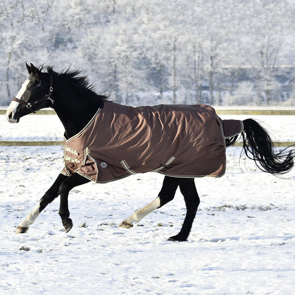 Busse Move Winter 200 Turnout Rug Brown Snow Scene 603094